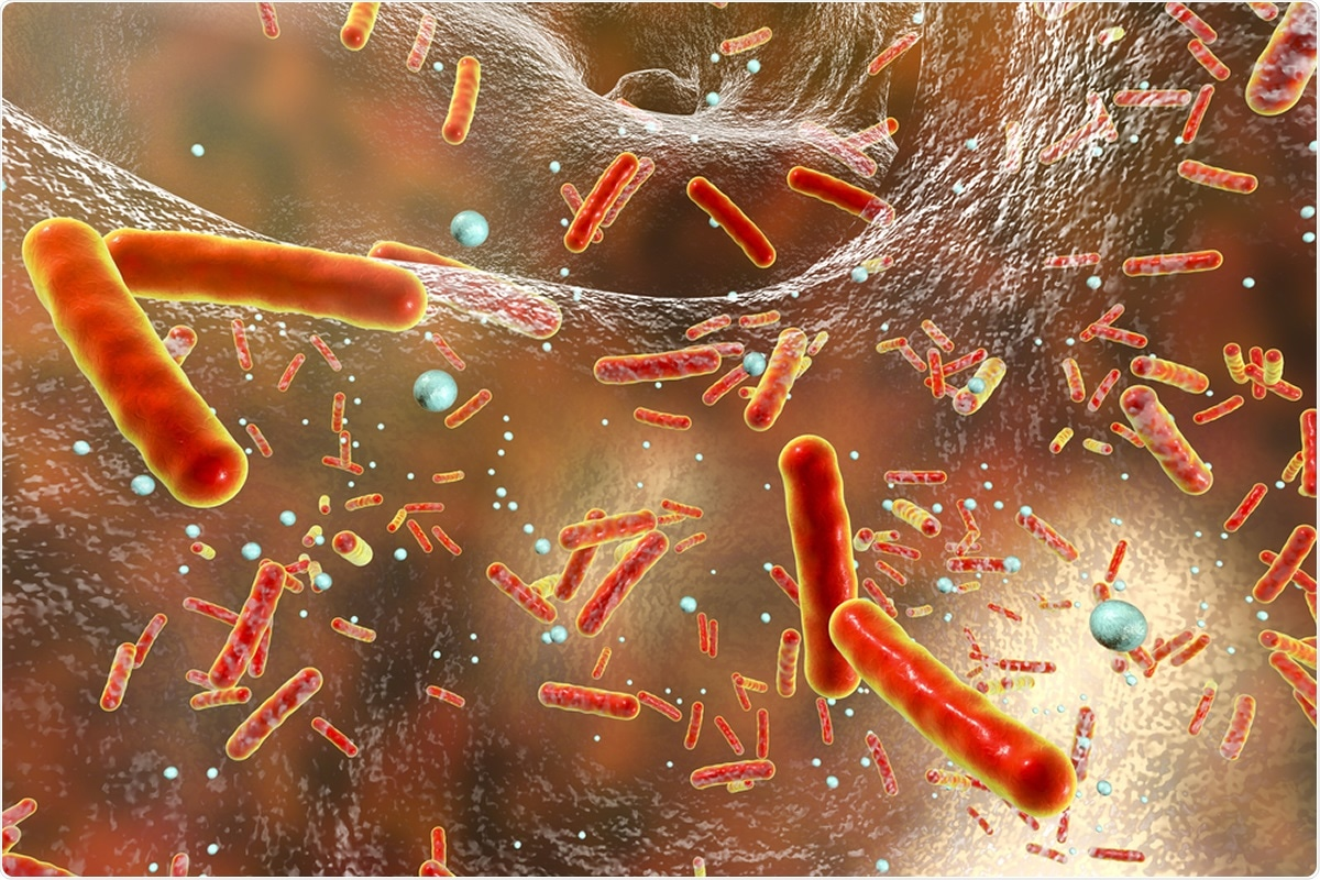 Study: Exclusion of bacterial co-infection in COVID-19 using baseline inflammatory markers and their response to antibiotics. Image Credit: Kateryna Kon / Shutterstock
