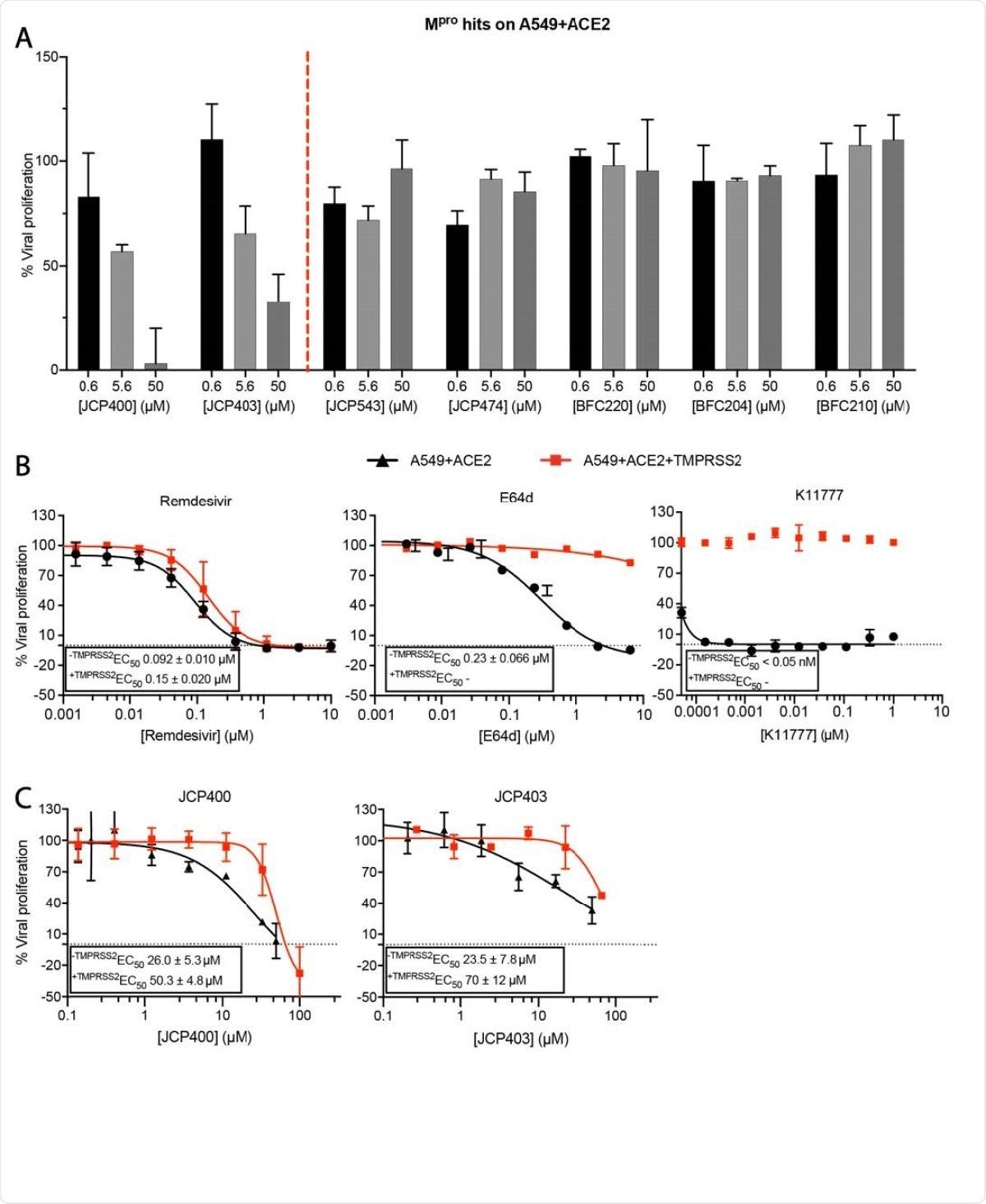 Potencia de los aciertos de Mpro en ensayos de infección celular por SARS-CoV-2.  A) Dos de los seis inhibidores de Mpro recientemente identificados son activos en el modelo de infección A549 + ACE2.  B) Curvas de inhibición del SARS-CoV-2 de Remdesivir, E64d y K11777 en células A549 + ACE2 con o sin expresión de TMPRSS2.  C) Curvas de inhibición de SARS-CoV-2 de los inhibidores de Mpro JCP400 y JCP403 en células A549 + ACE2 con o sin expresión de TMPRSS2.  Los datos son medias ± DE de dos experimentos repetidos.
