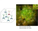 How to Use 3D Photostimulation for Optogenetics