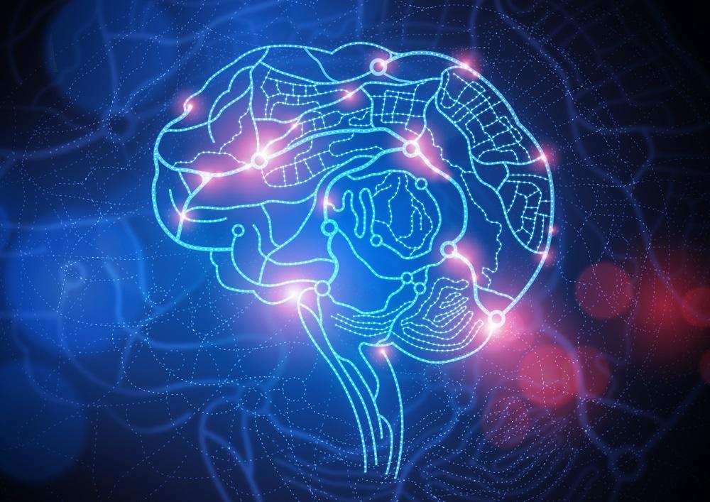 cartographie du cerveau