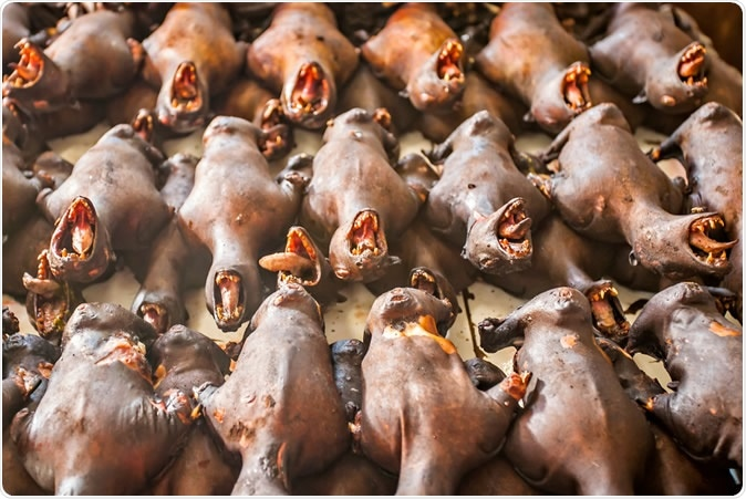 Roasted bats at Tomohon market, Sulawesi, Indonesia. Image Credit: Sony Herdiana / Shutterstock