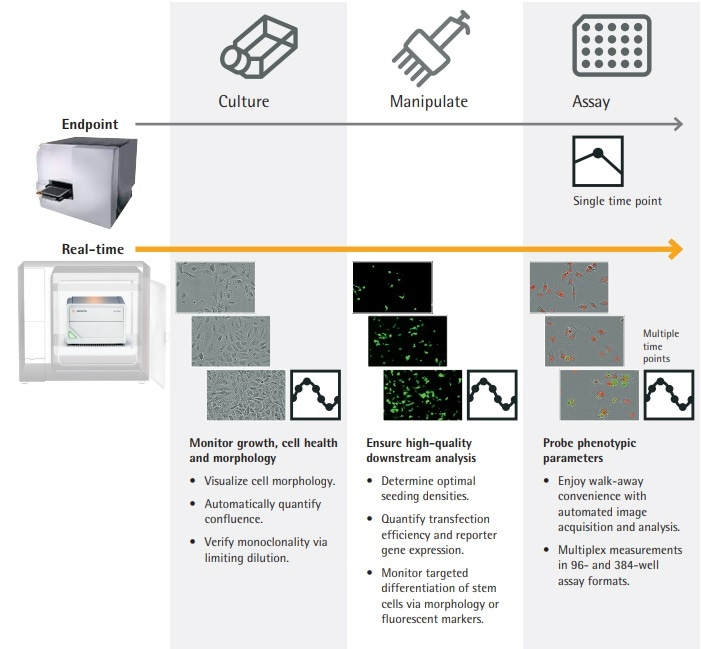 IncuCyte® SX1 Live-Cell Analysis System