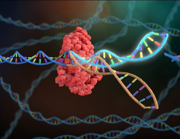 CRISPR technology mobilized for rapid COVID-19 diagnosis – News-Medical.Net