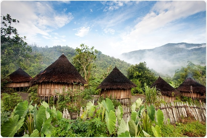 Study: Eruption of COVID-19 like illness in a remote village in Papua (Indonesia). Image Credit: Tyler Olson / Shutterstock