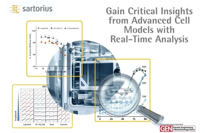 Real Time Analysis of Advanced Cell Models eBook