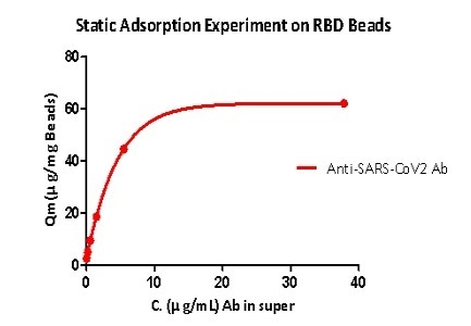 Static adsorption experiment on RBD beads