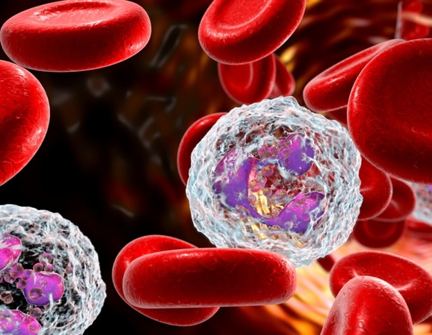 How an ignored white blood cell may cause COVID-19 deaths – News-Medical.Net