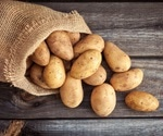 Using microchip-based qPCR for the Rapid Detection of Potato Pathogens