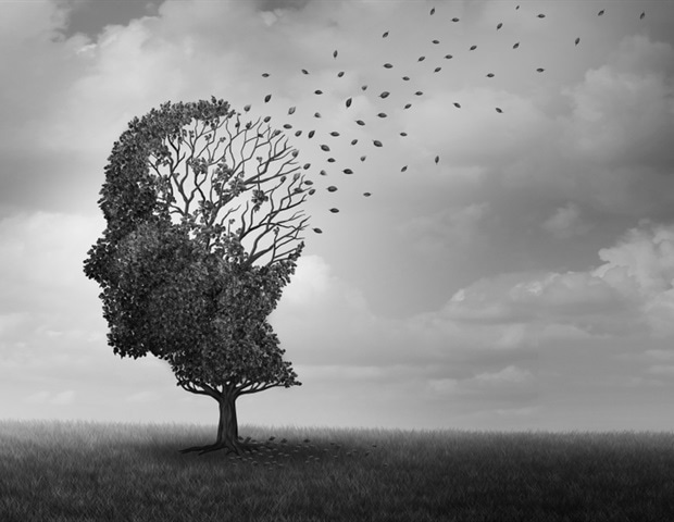 Identifying Alzheimer's risk factors in young people – News-Medical.Net