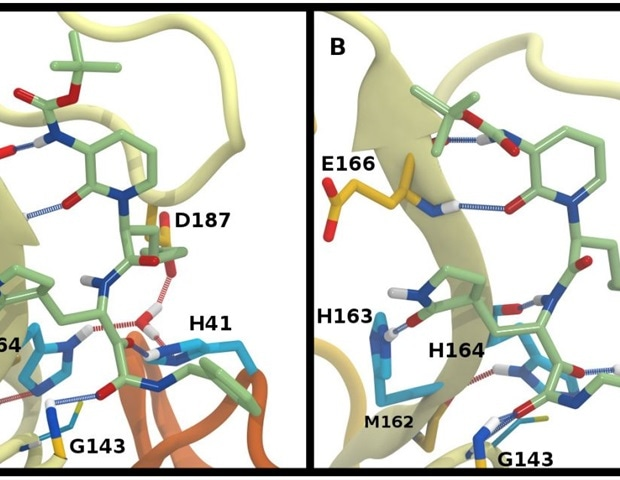 New insights into structural stability of SARS-CoV-2 main protease – News-Medical.Net