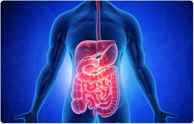 COVID-19 and Diarrhea