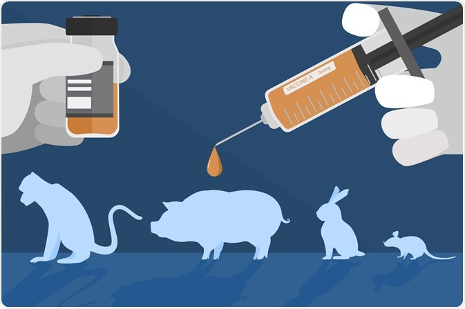 The Ethics of Animal Models in Preclinical Testing