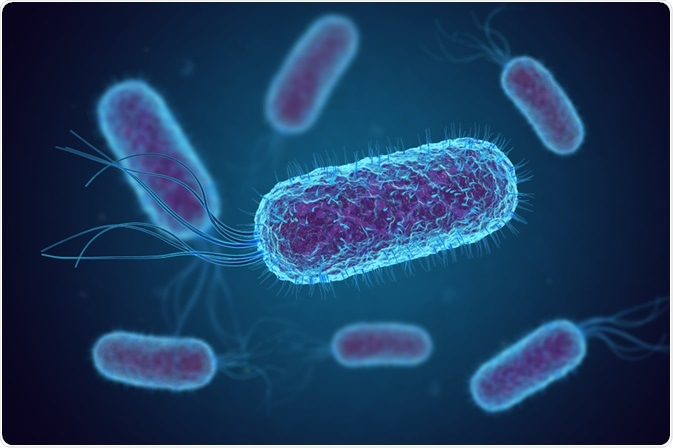toxic shock syndrome bacteria