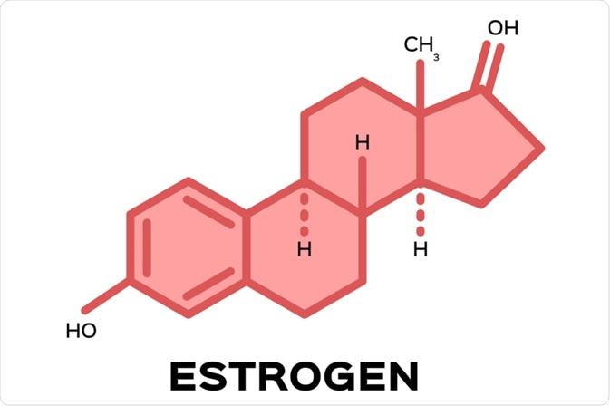 Estradiol and the Brain