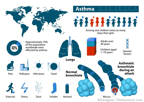 Asthma infographic