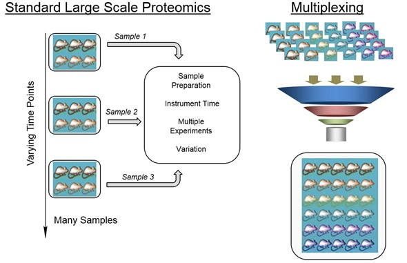 Standard large scale proteomics vs multiplexing