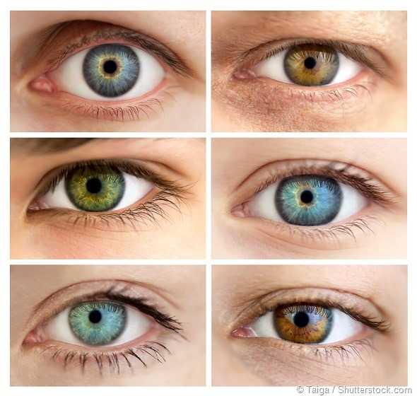 Eyes gender
