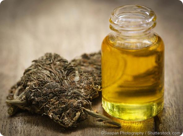 Medicinal cannabis oil