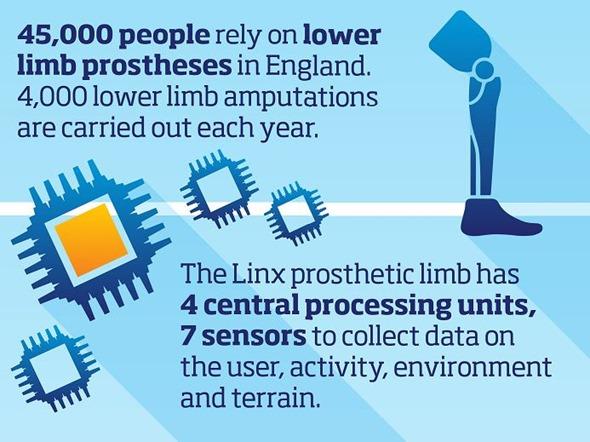 Prosthetic limb stats
