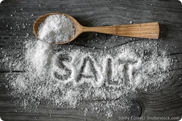 Salt - 590
