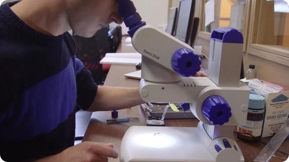 Microscopio de Bruker