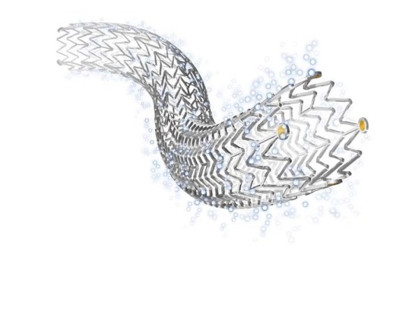 Drug-eluting peripheral stent from Cook Medical selected