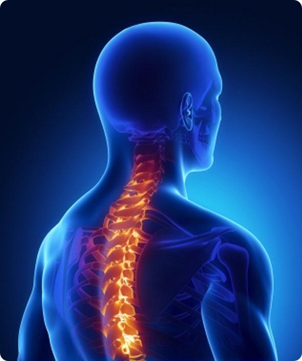 Backbone injury in x-ray
