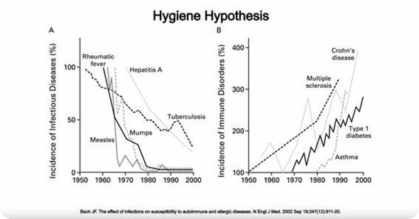 Hygenie hypothesis