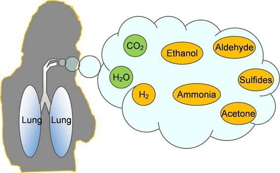 Conceptual image of component gases in a person's breath