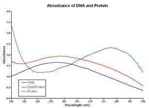 Absorbance profiles of DNA and proteins samples from 240 to 290 nm