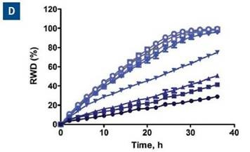 Effect of blebbistatin on the migration and invasion of HT-1080 cells