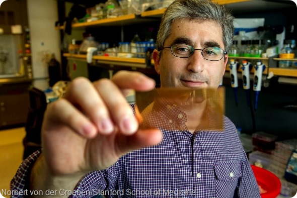 Brian Feldman, MD, a pediatric endocrinologist at the Stanford School of Medicine, holds a plasmonic chip he developed that could improve the ability to diagnose people with type-1 diabetes. Photo taken July 4, 2014.  (Norbert von der Groeben/Stanford School of Medicine )