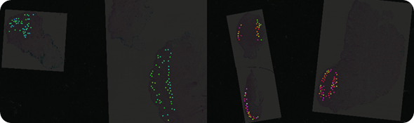 Mass spec image of a peptide at mass 1198.7. The peptide is more highly expressed in malignant lesions (red, pink, white) than in benign lesions (blue, green).