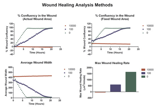 Variable determinations of wound healing and cell migration