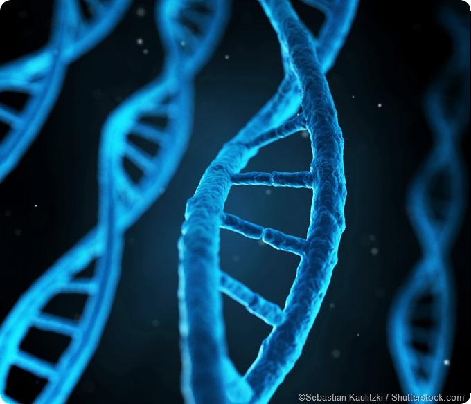 illustration human genes