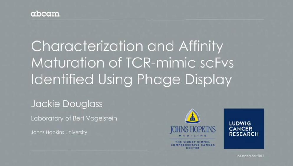 Characterization and Affinity Maturation of Tcrmimic ScFvs Identified Using Phage Display Webinar